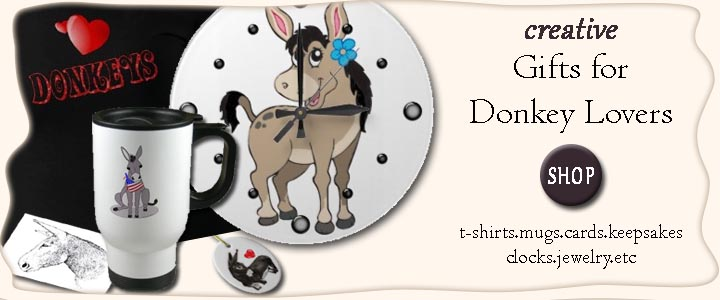 Creative Donkey Gifts for donkey lovers
