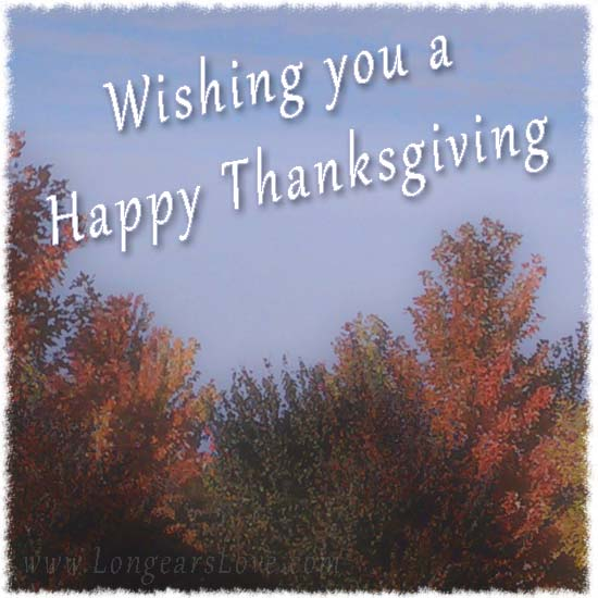 Happy Thanksgiving from LongearsLove.com